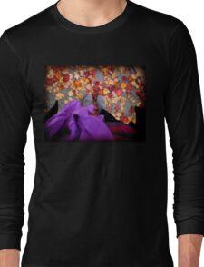 autumn/ fall Long Sleeve T-Shirt