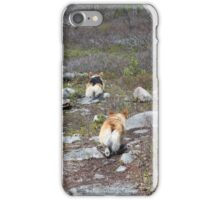 Happy Trails, Corgi Style iPhone Case/Skin