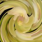 Orchid in an Arty Spin ! by Trish Meyer