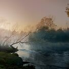 Misty Morning - Tumut by GiGee