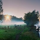 Tumut Beauty 2 by GiGee