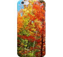 Autumn frenzy iPhone Case/Skin