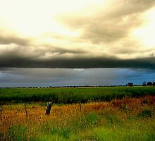 Chasing a Storm by Chris Chalk