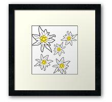 Edelweiss Framed Print