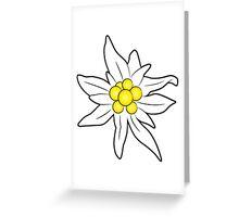 Edelweiss flower Greeting Card
