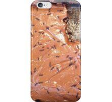 Missing Piece iPhone Case/Skin