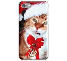 Christmas Ginger Ninja iPhone Case/Skin