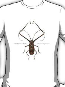 Harlequin Beetle - Acrocinus longimanus T-Shirt