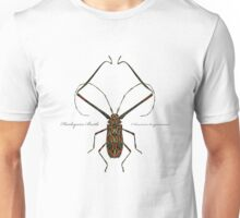 Harlequin Beetle - Acrocinus longimanus Unisex T-Shirt