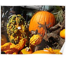 Knobby Pumpkins Poster