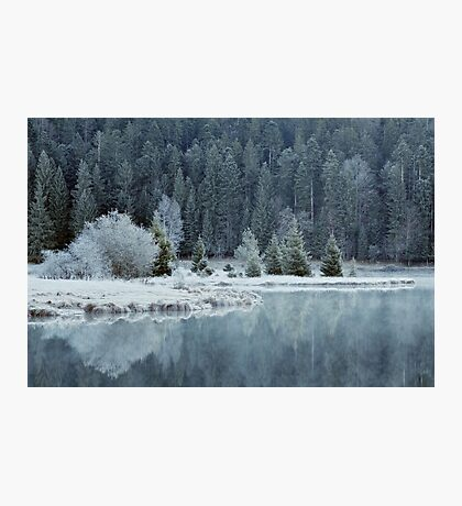 Whitened by frost Photographic Print