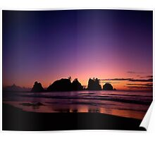 Shi Shi Beach, Olympic National Park, Washington Poster