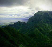Green Giants - Napali Coast - Kauai  by mAriO vAllejO