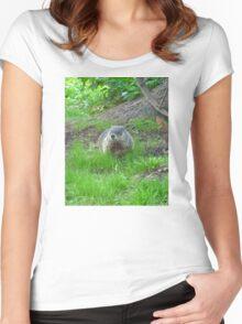 Chuckster Women's Fitted Scoop T-Shirt