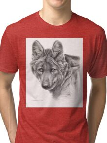 Maned Wolf g40 by schukina Tri-blend T-Shirt