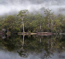 Lake Rosebery at Tullah, Tasmania  by gaylene