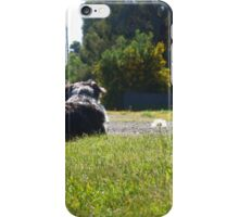 Woof. iPhone Case/Skin