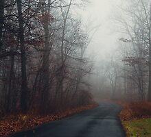 Fog by Amber Redfield