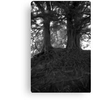 Wizard Trees, Avebury England c1999 Canvas Print