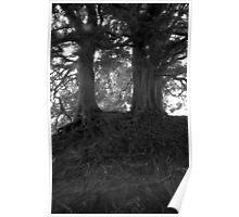 Wizard Trees, Avebury England c1999 Poster