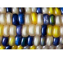 Flint Corn Color Photographic Print