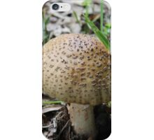 mushroom in the forest iPhone Case/Skin