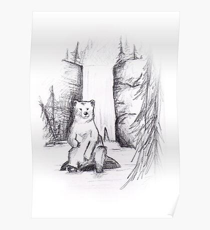 Bear pencil sketch Poster