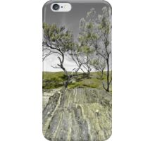 Moonee Beach Nature Reserve iPhone Case/Skin