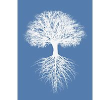 Tree of Life (iphone, ipod, ipad deflectors) and more Photographic Print