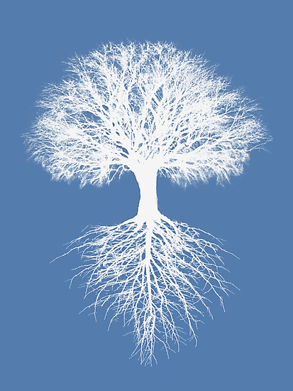 Tree of Life (iphone, ipod, ipad deflectors) and more by Rob Price