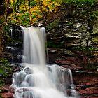 Sheldon Reynolds Falls by Miles Moody