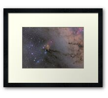 The Scorpion's Head Framed Print
