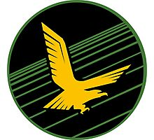Golden Eagle Squadron of the IDF Patch Photographic Print