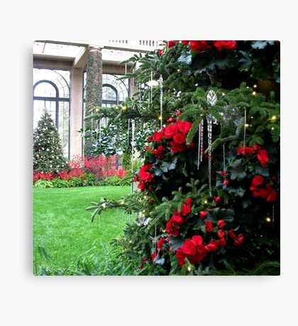 Begonia Christmas Tree in the Conservatory Canvas Print