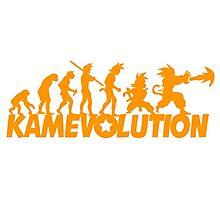 KameEvolution Photographic Print