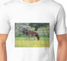 Cute Pony in Field of Flowers Unisex T-Shirt