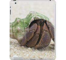 Hermit Coconut Crab from Vanuatu iPad Case/Skin