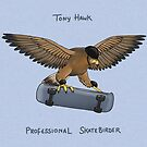Tony Hawk, Professional Skatebirder by Katie Corrigan