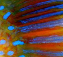 Parrot Fish up close! by Addicted2Fabric