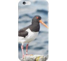 Oyster-catcher iPhone Case/Skin