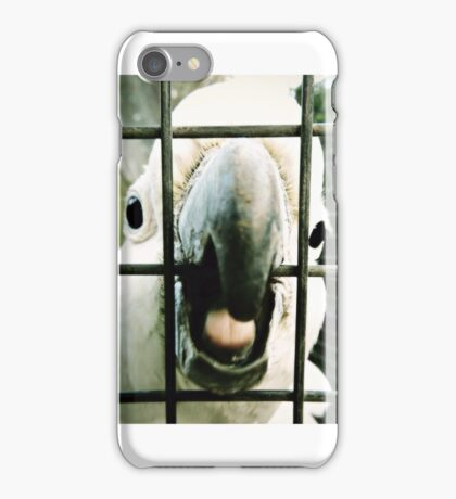 Hello cocky iPhone Case/Skin