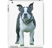 Bosten Terrier 1b iPad Case/Skin