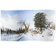 Winter at Edwards Gardens Poster