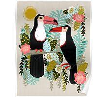 Toucans by Andrea Lauren  Poster