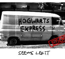 Hogwarts Express (Seems Legit) by Scarecrow506