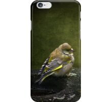 Solitary Finch iPhone Case/Skin