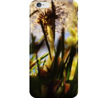 To the Greatest Heights  iPhone Case/Skin