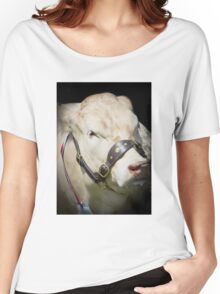 Prize Cow at a agriculture show Women's Relaxed Fit T-Shirt