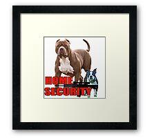 Pit bull Boston terrier security Framed Print