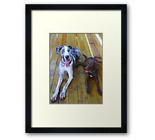 Hank and Clay Framed Print